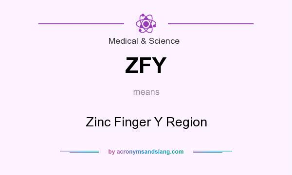 What does ZFY mean? It stands for Zinc Finger Y Region
